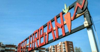 Inchiesta sull'ecologia e gli Orti Urbani 4