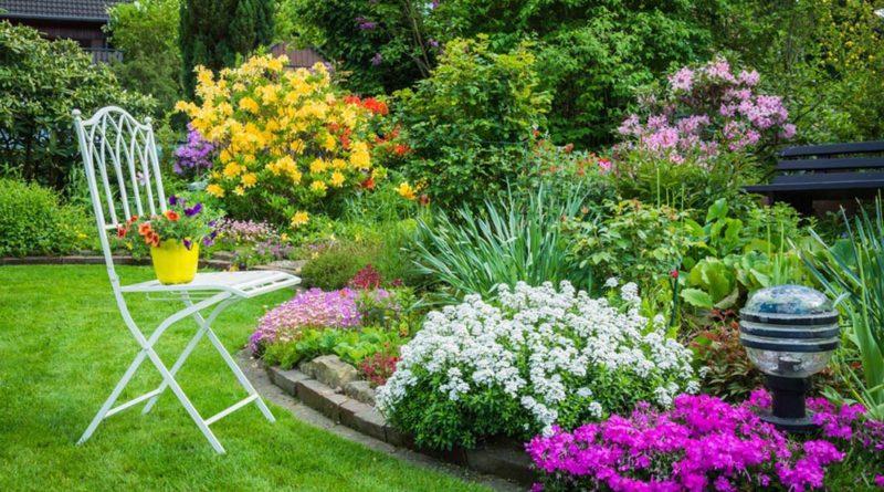 L'ecologia non è mai giardinaggio 1