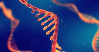 Reingegnerizzazione del Codice Sorgente del Vaccino BioNTech/Pfizer 2